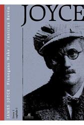 Finnegans Wake - Livro 1 Volume 1