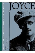 Finnegans Wake - Livro 1 Volume 3