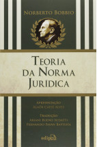 Teoria na norma jurídica