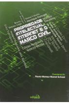 Propriedade intelectual, internet e o marco civil